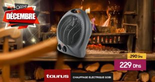 Promo Le Comptoir Electro Chauffage Electrique GOBI 229Dhs