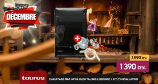 Promo Le Comptoir Electro Chauffage Gaz Infra Bleu 1390Dhs