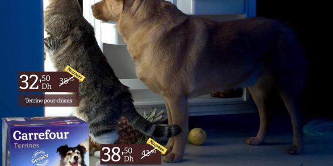 promo carrefour gourmet maroc nourriture chats et chiens jusqu au 14 mars les soldes et. Black Bedroom Furniture Sets. Home Design Ideas
