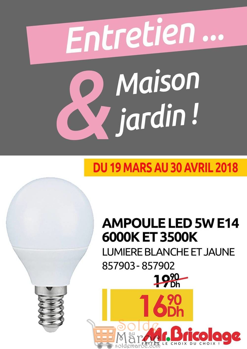 Flyer Mr Bricolage Spéciale ENTRETIEN Jardin & Maison