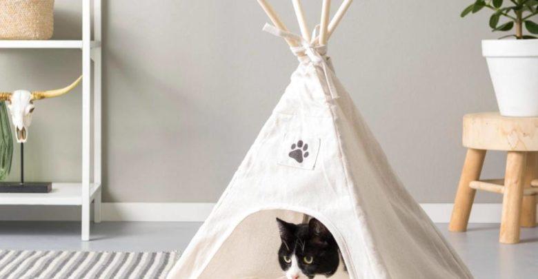 Photo of Nouveau chez Casa Maroc Tente pour animal TIPI 207Dhs
