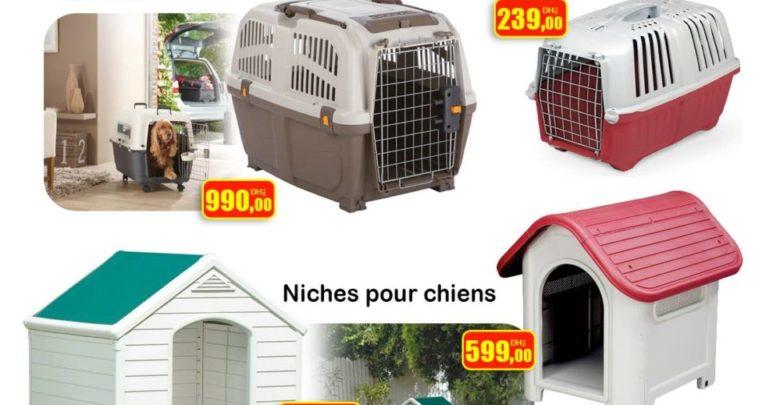Photo of Nouveau chez Bricoma Cage animal de transport et niche pour chiens