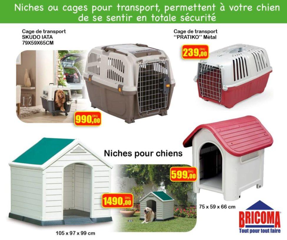 Nouveau chez Bricoma Cage animal de transport et niche pour chiens