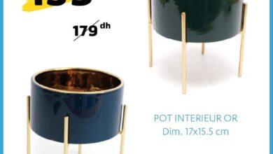Soldes Alpha55 Pot intérieur OR 17x15.5cm 159Dhs au lieu de 179Dhs