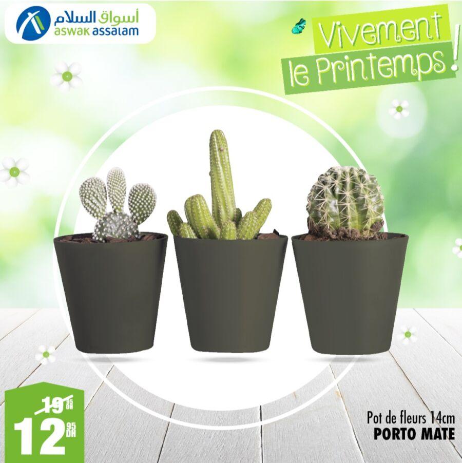 Soldes Printemps Aswak Assalam Pot de fleur 14cm 13Dhs au lieu de 20Dhs