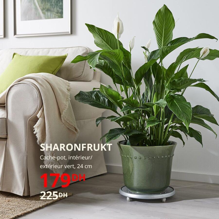 Soldes Ikea Maroc Cache-pot vert 24cm SHARONFRUKT 179Dhs au lieu de 225Dhs