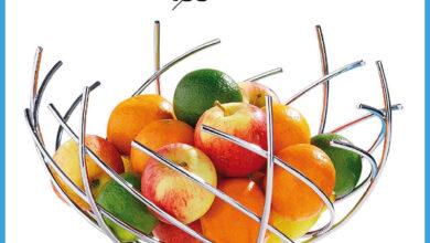 Soldes Alpha55 Coupe de fruits en inox 31cm 99Dhs au lieu de 155Dhs