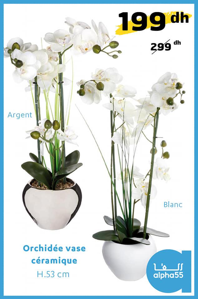 Soldes Alpha55 Orchidée vase en céramique 53cm 199Dhs au lieu de 299Dhs