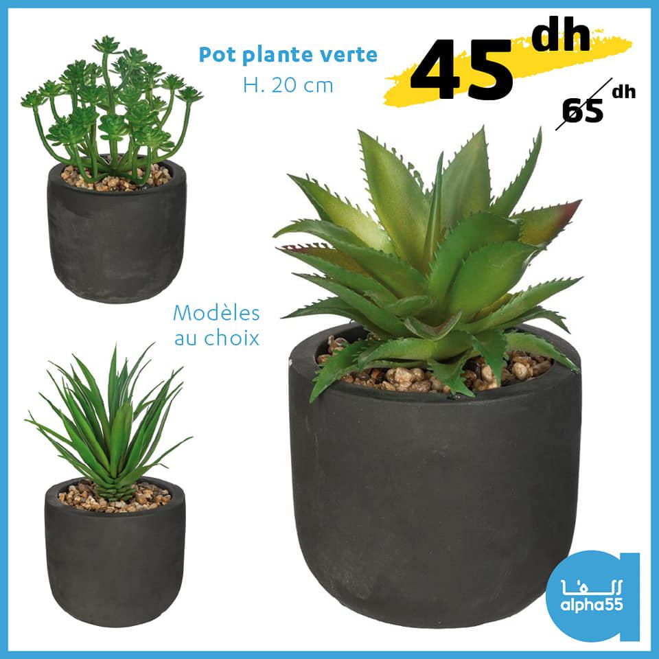 Soldes Alpha55 pot plante verte 20cm 45Dhs au lieu de 65Dhs